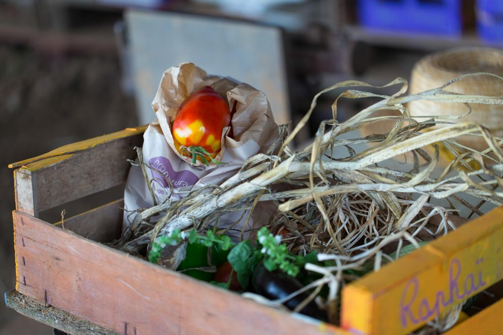 association-jardinature-poitiers
