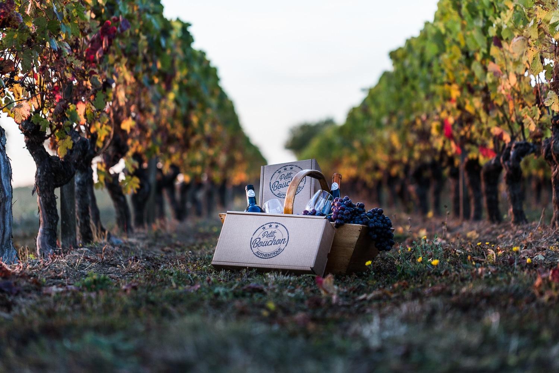 vigne et panier - ptit-bouchon-seance-photo-d-entreprise-8